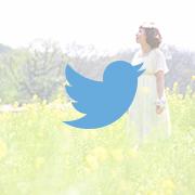 ecoo_photoさんのツイート